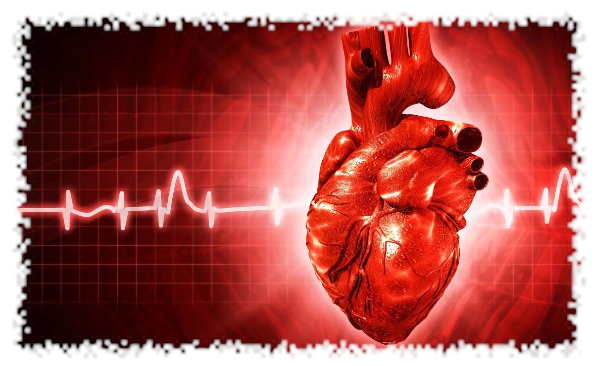 chivasso-farmacia-holter-cardiaco